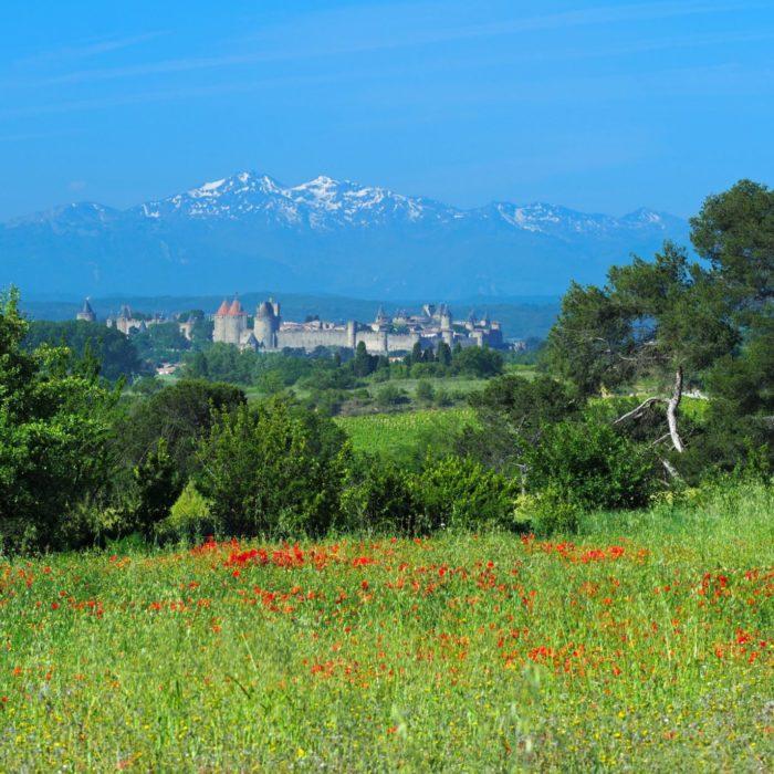 autour-de-carcassonne