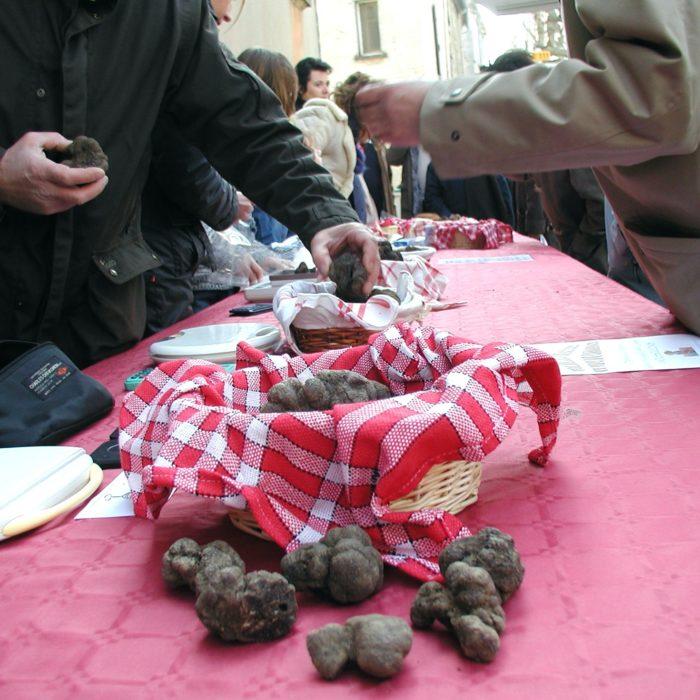 Hiver-Marchés-aux-Truffes-aude-carcassonne
