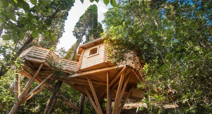 Cabanes dans les bois – Villalier_11
